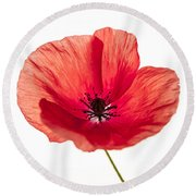 Red Poppy Flower Round Beach Towel