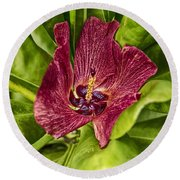 Red Tropical Tree Flower Round Beach Towel