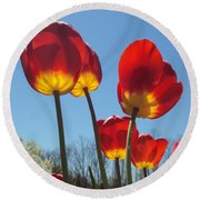 Red Tulips With Blue Sky Background Round Beach Towel