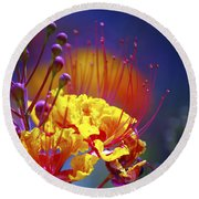 Red Yellow Blossoms 10197 Round Beach Towel