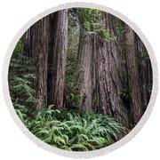 Redwood Round Beach Towel