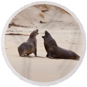 Rough Courtship Of Male And Female Hookers Sealions Round Beach Towel