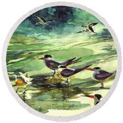 Royal Terns And Black Skimmers Round Beach Towel