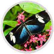 Sara Longwing Butterfly Round Beach Towel