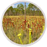 Schnell's Pitcher Plant Round Beach Towel