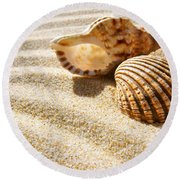 Seashell And Conch Round Beach Towel by Carlos Caetano