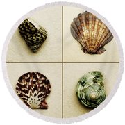 Seashell Composite Round Beach Towel