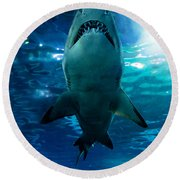 Shark Silhouette Underwater Round Beach Towel
