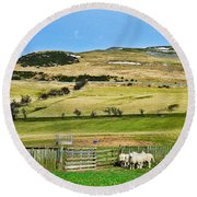 Sheep In Meadow Round Beach Towel