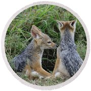 Silver-backed Jackal Pups Round Beach Towel