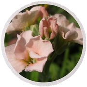 Single Peach Stocks From The Vintage Mix Round Beach Towel