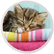 Sleepy Kitten Round Beach Towel