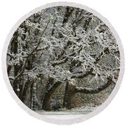 Snow On Trees Round Beach Towel