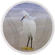 Snowy Egret At The Beach Round Beach Towel