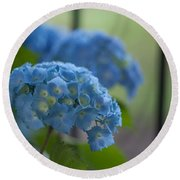 Soft Blue Hydrangea Round Beach Towel