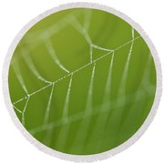 Spider Web With Dew Drops  Round Beach Towel