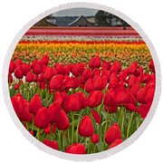 Springtime Tulip Field Art Prints Round Beach Towel