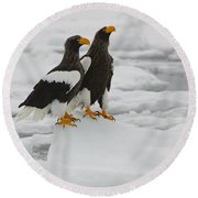 Stellers Sea Eagles Round Beach Towel