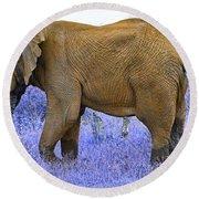 Styled Environment-the Modern Elephant Bull Round Beach Towel