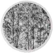 Summer Forest Trees Round Beach Towel