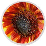 Sunflower From The Color Fashion Mix Round Beach Towel