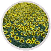 Sunflower Nirvana 13 Round Beach Towel