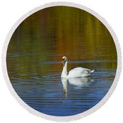 Swan On Wintergreen Lake Round Beach Towel