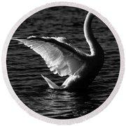 Swan Wingspan Round Beach Towel