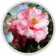 Sweet Camellia Round Beach Towel