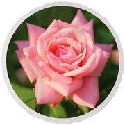Sweet Pink Rose Round Beach Towel by Carol Groenen