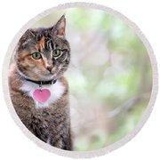 Tabby Cat Round Beach Towel