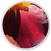 Tall Bearded Iris Named Ancient Echoes Round Beach Towel