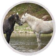 Tender Moments - Wild Horses  Round Beach Towel