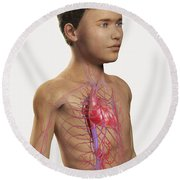 The Cardiovascular System Pre-adolescent Round Beach Towel