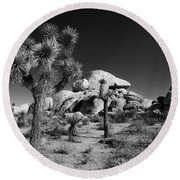 The Joshua Tree Round Beach Towel