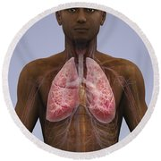 The Lungs And Cardiovascular System Round Beach Towel
