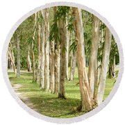 The Path Between The Trees Round Beach Towel