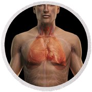 The Respiratory And Cardiovascular Round Beach Towel