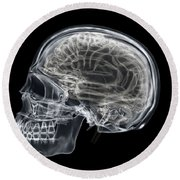 The Skull And Brain Round Beach Towel