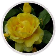 Yellow  Rose Of Summer Round Beach Towel