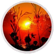 Thistles In The Sunset Round Beach Towel