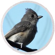 Titmouse Round Beach Towel