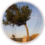 Tree Rock Wyoming Round Beach Towel