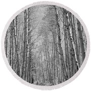 Trees Along A Road, Log Cabin Gold Round Beach Towel