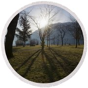 Trees In Backlit Round Beach Towel