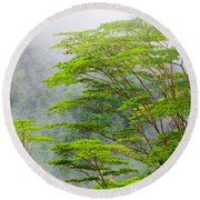 Tropical Forest, Seychelles Round Beach Towel