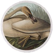 Trumpeter Swan Round Beach Towel by John James Audubon