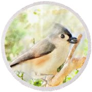Tufted Titmouse With Seed - Digital Paint Round Beach Towel