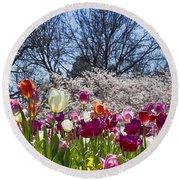 Tulips At Dallas Arboretum V94 Round Beach Towel