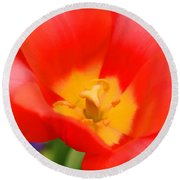 Tulips At Thanksgiving Point - 28 Round Beach Towel
